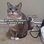 Смешные комментарии из соц. сетей, высказывания, смешные картинки (*мат) ч.22