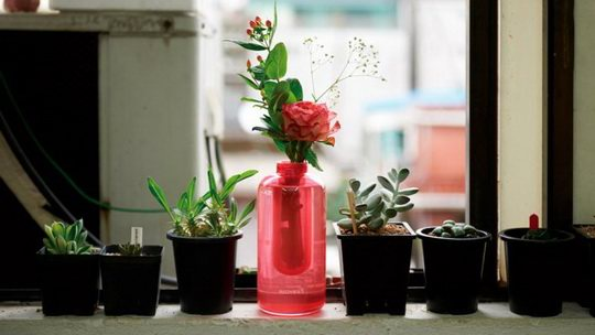 Внешне он ничем не напоминает традиционный огнетушитель, поскольку изготовлен в виде красивой вазы для цветов