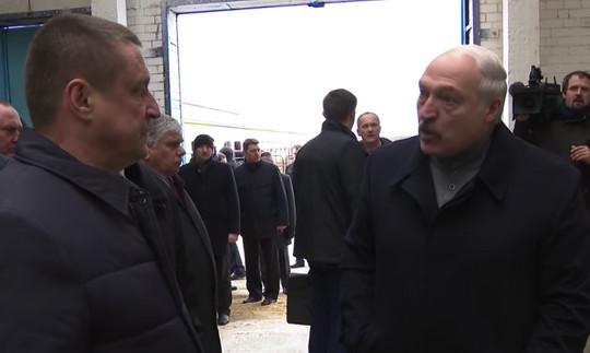 Когда Лукашенко обнаружил грязных коров, которым не хватило соломы, поднялся грандиозный скандал.
