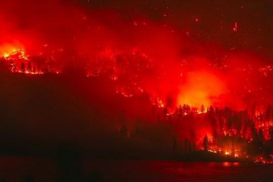 В Красноярском крае и Иркутской области горит почти миллион гектаров леса.