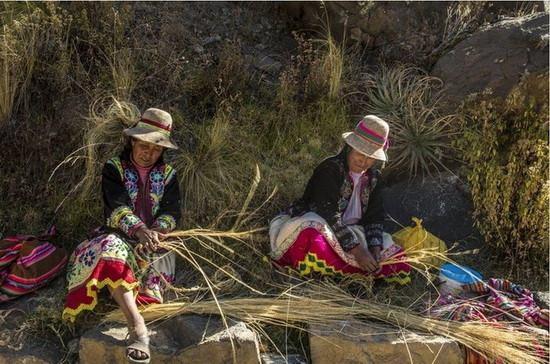 При этом по традиции на возведении моста работают только мужчины. Женщины занимают места на верхних участках ущелья и плетут мелкие веревки.