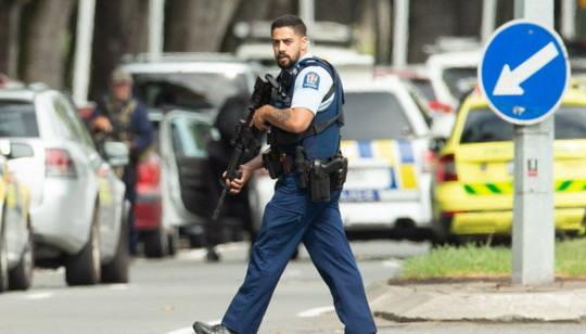 После терактов в мечетях Крайстчерча в Новой Зеландии начали выкуп оружия у населения. На это правительство выделило 121 миллион евро.