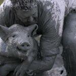 Du Cochon: свинский фестиваль в Квебеке