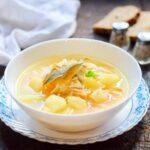 Вермишелевый суп с курицей (классический рецепт)