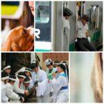 10 удивительных профессий в мире, которые на самом деле существуют