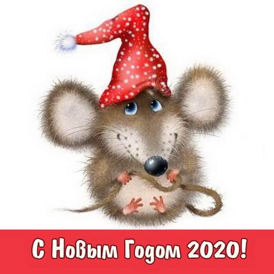 В этот чудесный праздник Новый Год, хотелось бы пожелать исполнения всех заветных желаний, крепкого здоровья, искреннего смеха