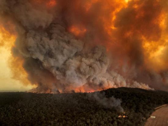 В начале этой недели клубы дыма во время лесных пожаров в Бэрнсдейле, штат Виктория