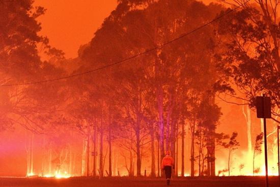 Пожарный проходит мимо горящих деревьев в Новом Южном Уэльсе в канун Нового года