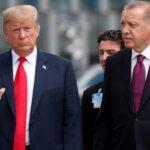 Трамп предостерег Эрдогана от иностранного вмешательства в Ливии