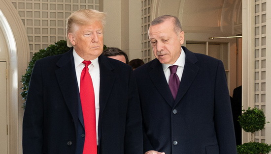 Трамп и Эрдоган обсудили Сирию