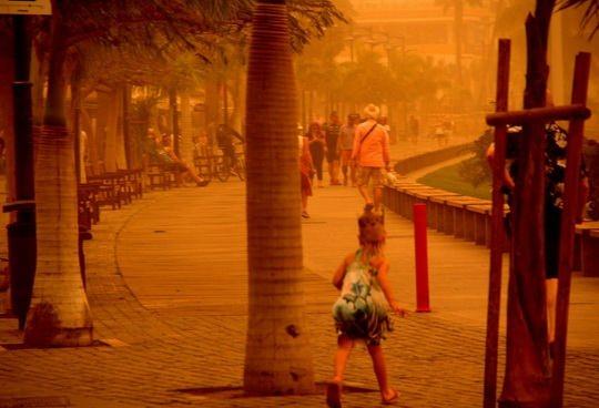 Канарские острова накрыла сильнейшая с 2002 года песчаная буря, принесенная ветром из пустыни Сахара.