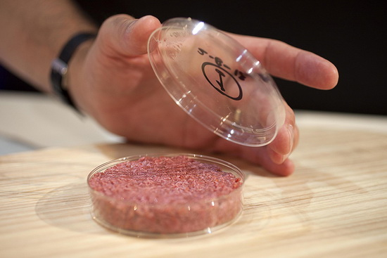 Мясо из пробирки