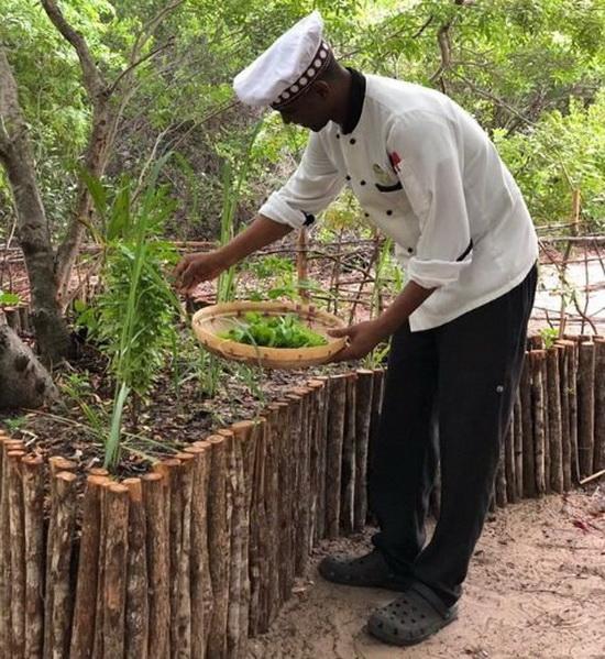 Согласно Instagram Флоры, на территории курорта есть ферма, где выращивают продукты, которые будут подавать гостям.