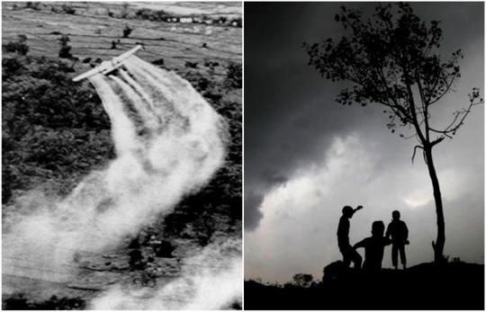 Вьетнамская война стала настоящим испытательным полигоном для самых разных типов оружия.