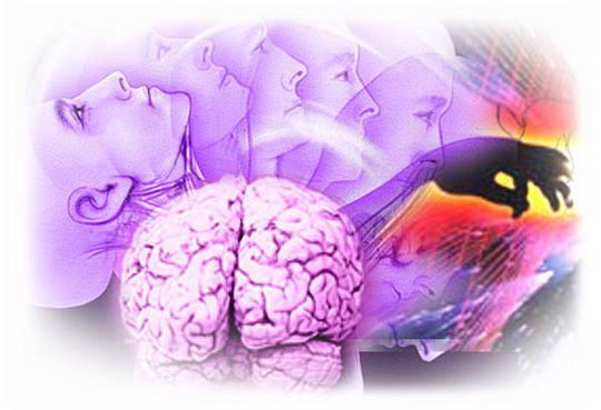 Когнитивизм — это современное направление в психологии