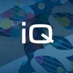 Коэффициент интеллекта ( IQ)— что это?