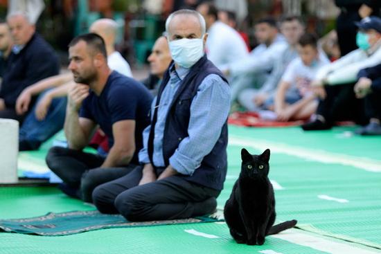 Черный кот участвует в Ид аль-Фитр, который происходит в конце месяца Рамадан