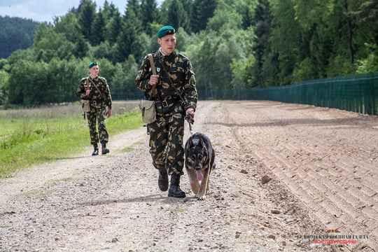 30 июля белорусские пограничники усилили оперативное прикрытие госграницы, в том числе на белорусско-российском участке.