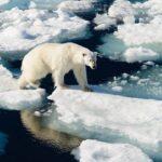 Таяние ледников Гренландии достигло точки невозврата