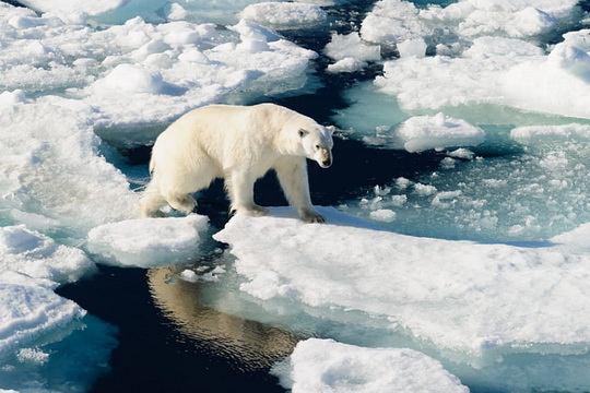 Уменьшение ледникового покрова Гренландии в условиях глобального потепления приобрело необратимый характер