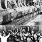 Сухой закон в США 1920 года