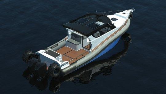 Компания Sealegs из Новой Зеландии на протяжении последних полутора десятилетий выпустила несколько моделей катеров амфибий, завоевавших популярность у любителей отдыха на воде.