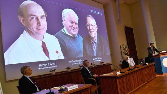 В 2020 году Нобелевскую премию по медицине получили ученые Харви Альтер, Майкл Хоутон и Чарльз Райс, открывшие вируса гепатита C.