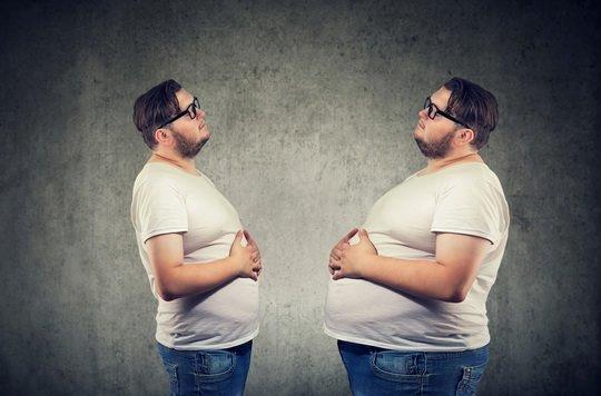 Длительность жизни без пищи зависит не только от комплекции, но и от интенсивности обмена веществ.
