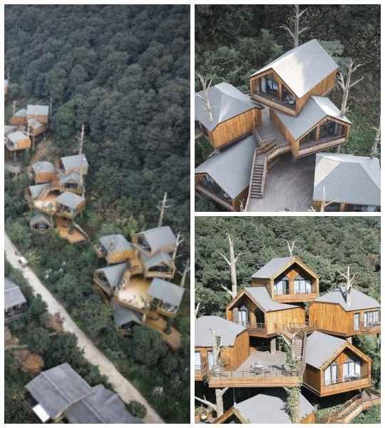 Многие из нас в детстве лазили по деревьям и устраивали там себе импровизированные домики.