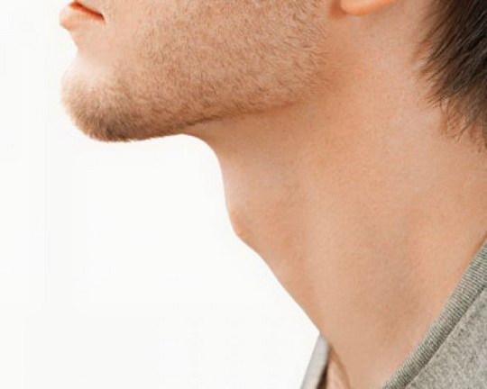 Кадык, или адамово яблоко, — это хрящ, который защищает щитовидную железу и голосовые связки от внешних воздействий.