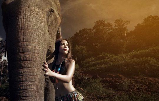 Исследования саванных слонов показали, что они умеют определять по голосу человека его язык, возраст и пол.