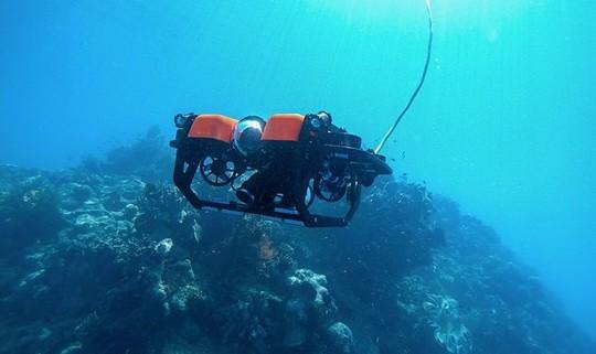 Все, кто мечтал заняться дайвингом и лично осмотреть Большой барьерный риф, теперь могут это сделать, не вставая с дивана