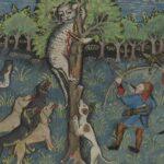 Кошачий геноцид в средневековой Европе