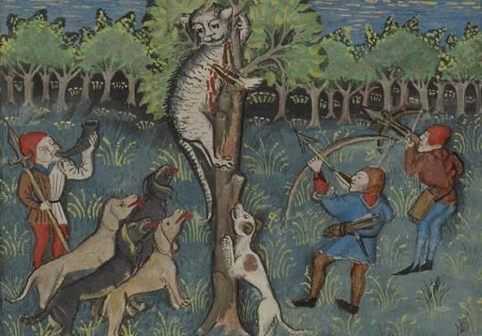 Почти 10 тысячелетий прошло с тех пор, когда кошки стали жить рядом с людьми