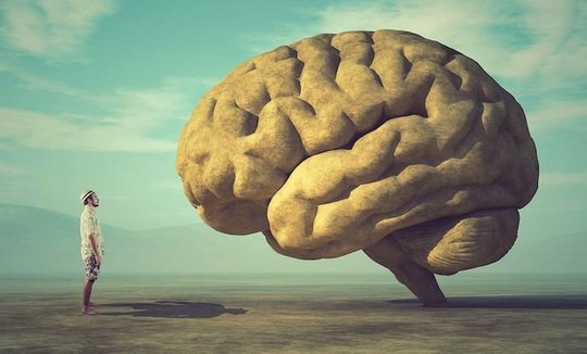 Нередко можно наткнуться на утверждение о том, что обычный человек использует только 10% возможностей своего мозга